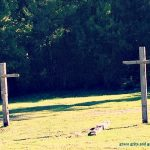 wooded crosses, Helena Ar