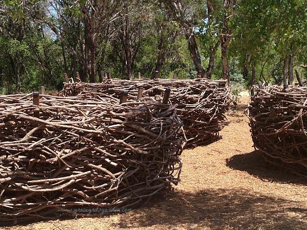 Giant Bird Nests - Luci and Ian Family Garden, Austin