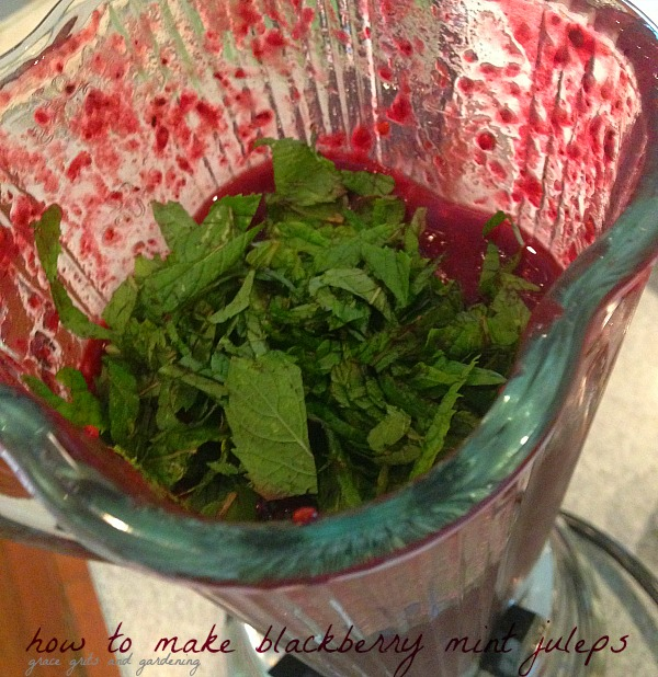 making blackberry mint juleps