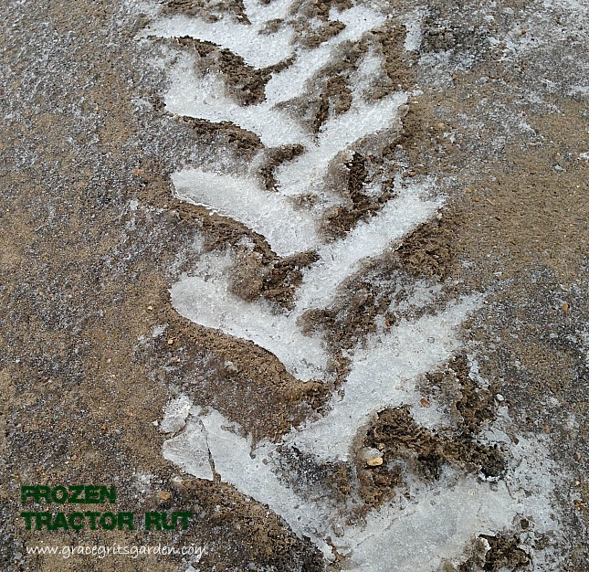 frozen tractor rut: farm art friday