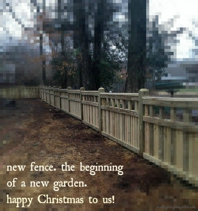 our new fence