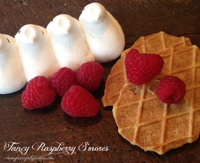 Fancy Raspberry s'mores - ingredients