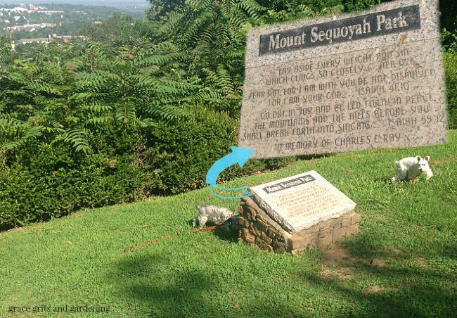 atop beautiful Mt. Sequoyah