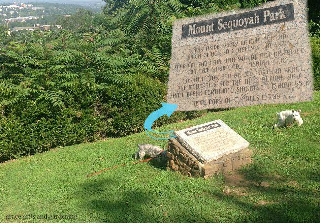 atop beautiful Mt. Sequoyah
