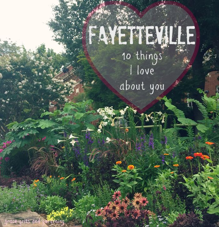Fayetteville - 10 things I love about you