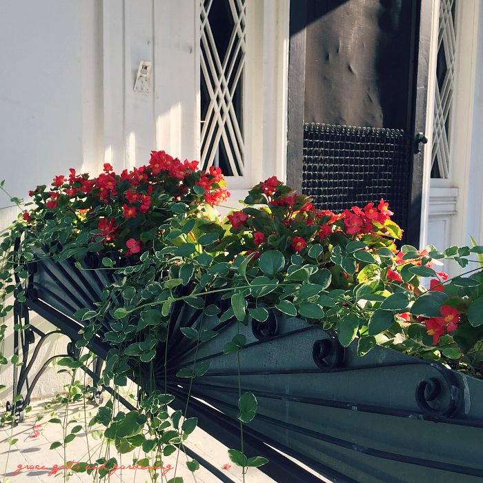 chasing summer - planter box at Headquarter's House