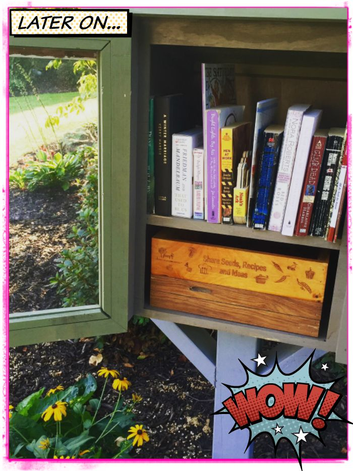our Little Free Library