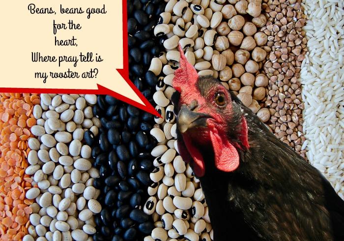 bean rooster art