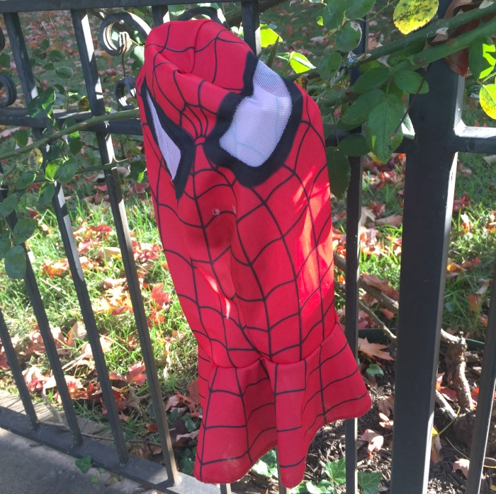 the morning after - spider man