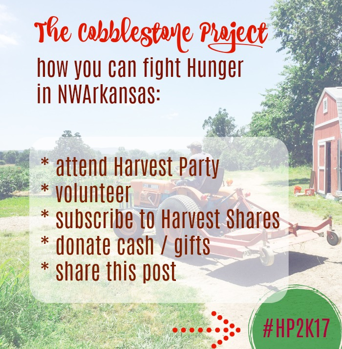 cobblestone project fights hunger