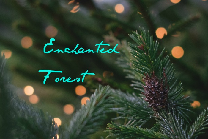 The Enchanted Forest in Memphis - Gracie Lee remembers