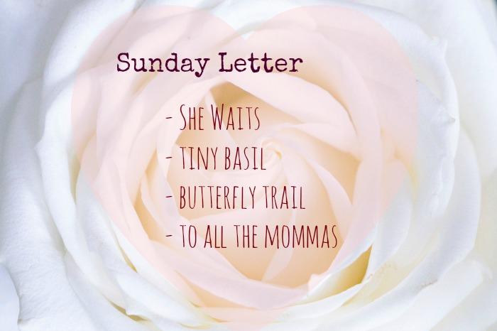 Sunday Letter 05.13.18